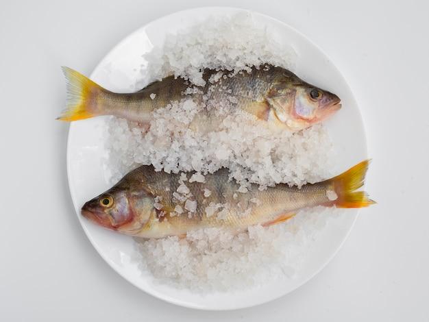 Вид сверху две рыбы на тарелке с минеральной солью