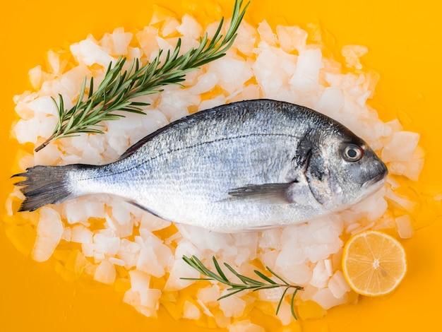 氷の上に敷設する新鮮な魚の正面図