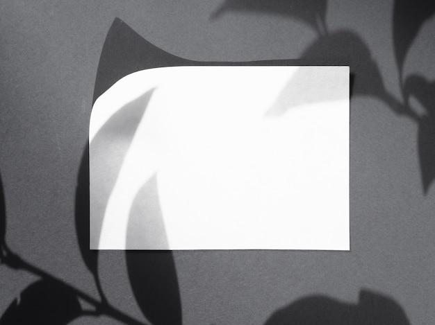 白い毛布の上の葉の影