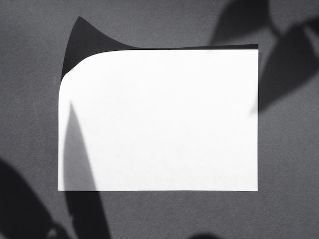Вид сверху белой бумаги с тенями