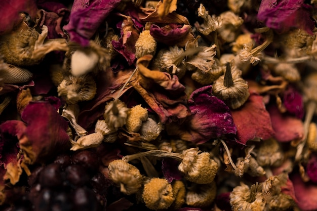芳香の花のクローズアップコレクション