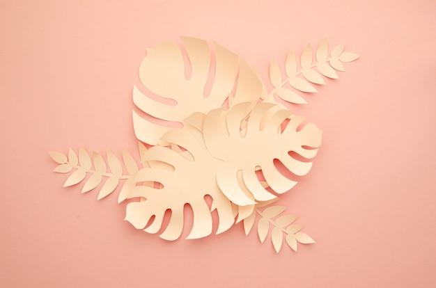 トロピカルピンクモンステラ植物