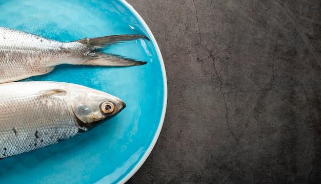 青いプレート上の魚のビューの装飾の上