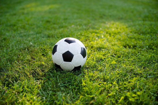 Футбольный мяч на зеленой траве в парке