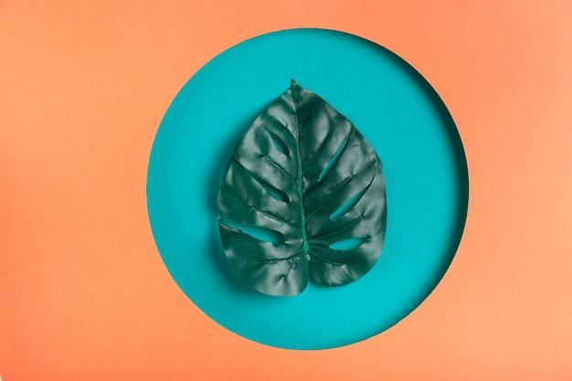 幾何学的な紙の形の中の現実的な葉