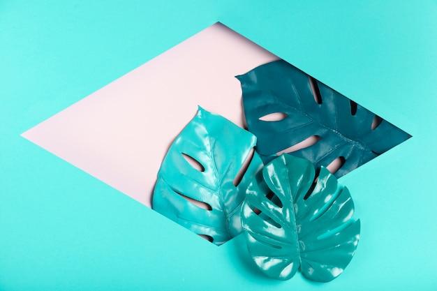 六角形の紙の形の中の葉