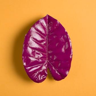 オレンジ色の背景に紫の葉