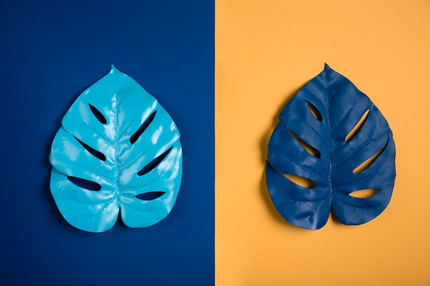 青とオレンジ色の背景に青い葉