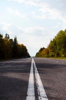 美しい木と高速道路の道