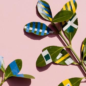 Композиция из окрашенных листьев фикуса