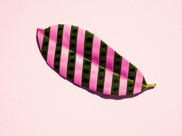 ピンクのストライプと孤立したイチジクの葉