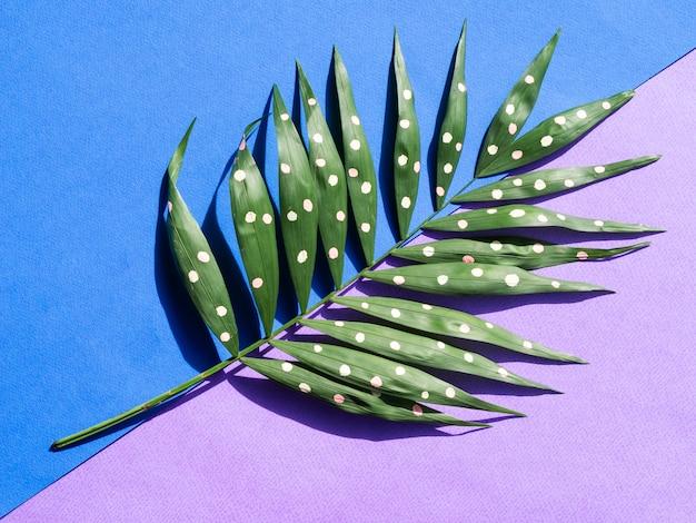 青と紫の背景に点線のシダの葉