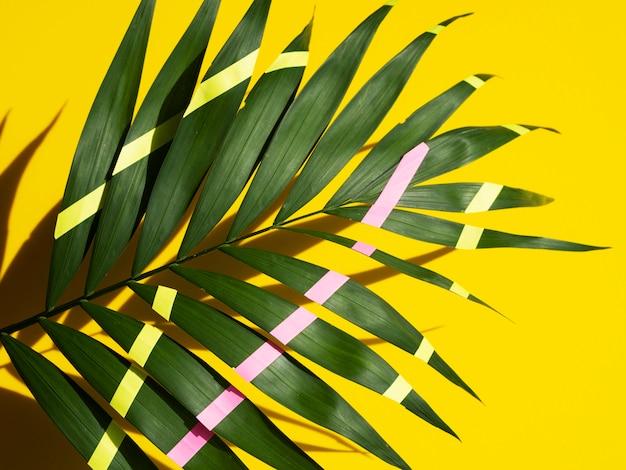 緑に描かれた熱帯シダの葉と黄色の線とピンク