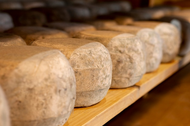 クローズアップの健康的な各種チーズ