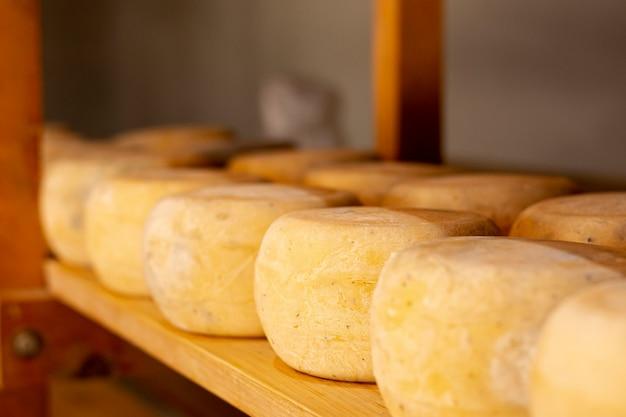 おいしい素朴なチーズの品揃え