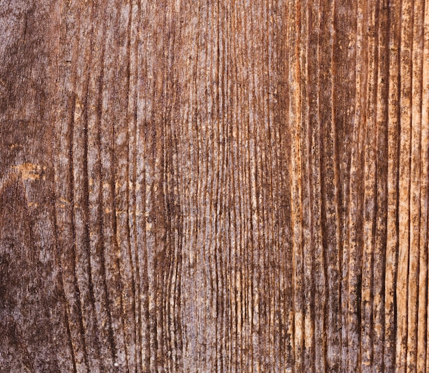 古い自然のパターンを持つ樹皮の木のテクスチャ