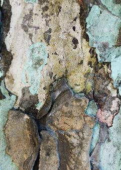 欠けた石の壁の断片
