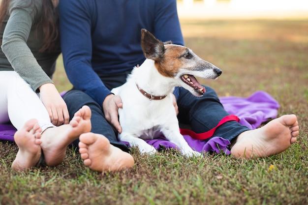 公園でカップルと座っている犬