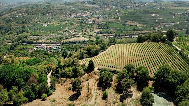 Вид с воздуха на зеленый сельский пейзаж