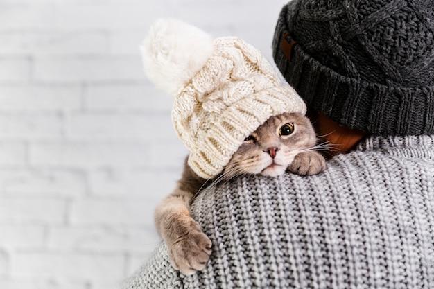 コピースペースかわいい猫の毛皮の帽子をかぶって