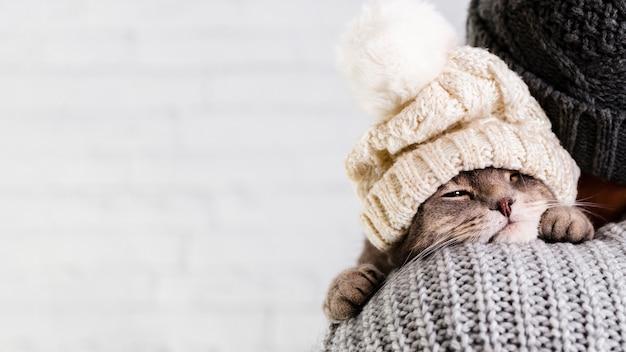 Вид сбоку маленький котенок с меховой шапкой