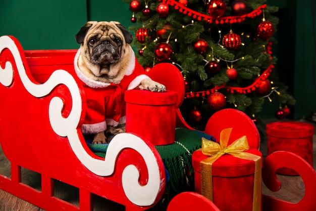 犬のサンタはクリスマスのためのサンタスライトに乗って