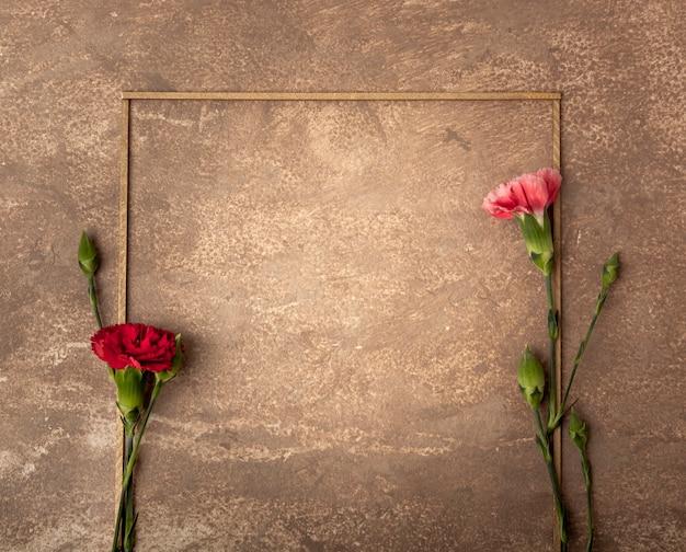 小さなカーネーションの花とレトロなセピアフレーム