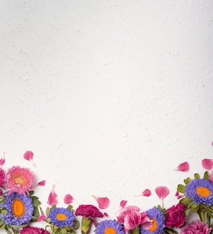 色とりどりの花とコピースペースの配置
