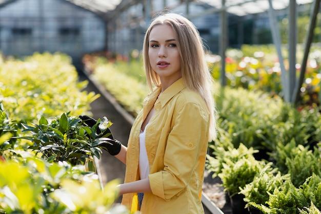 Вид сбоку молодая женщина ухаживает за растениями