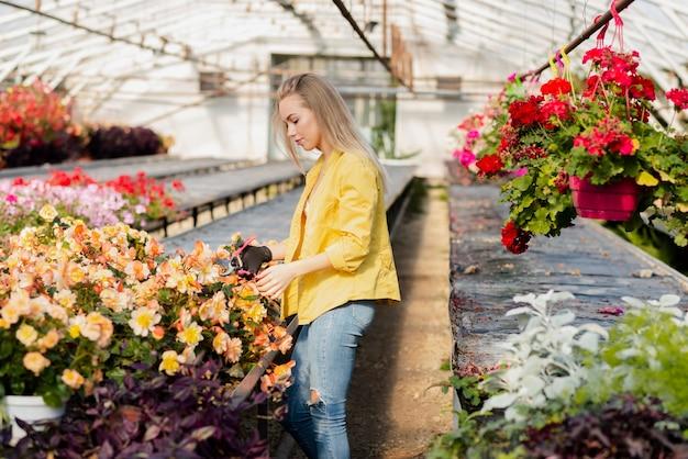 花を運ぶ高角の女性の葉