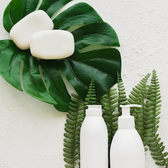 コンテナーと葉の石鹸