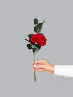 赤いバラを保持している正面の女性