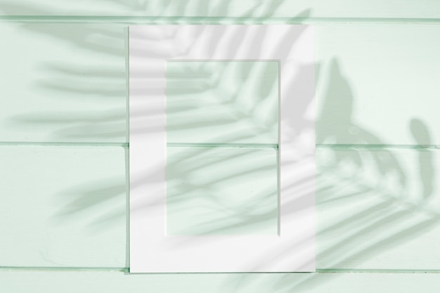 葉の影と垂直の白いフレーム