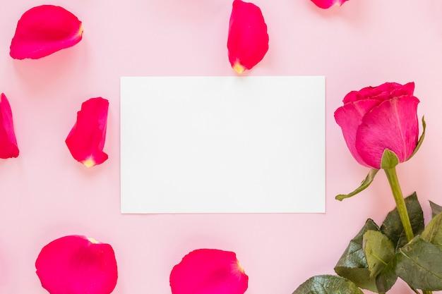 Лепестки роз с бумагой на день святого валентина
