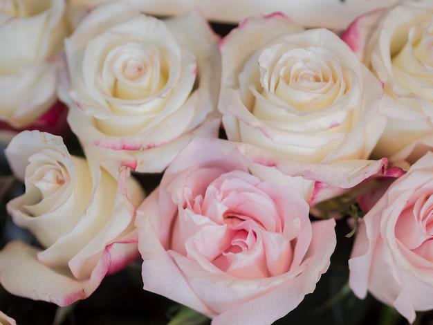 繊細なピンクのバラの花束をクローズアップ