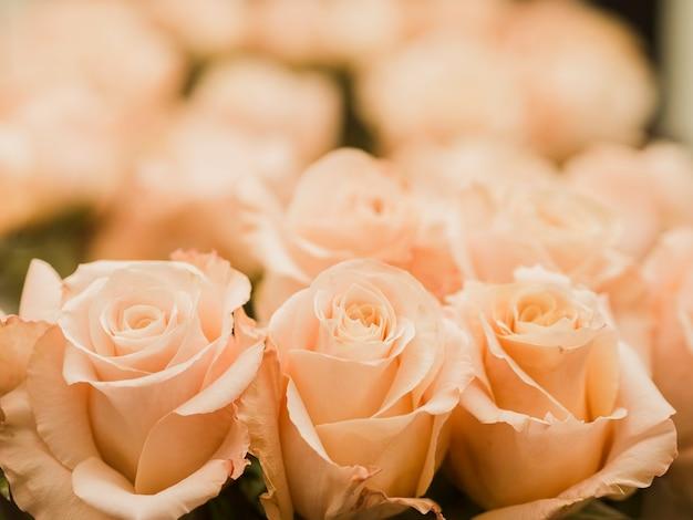 Крупным планом свадебный букет роз