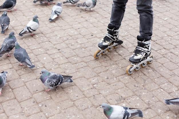 Женщина катается на роликах через голубей