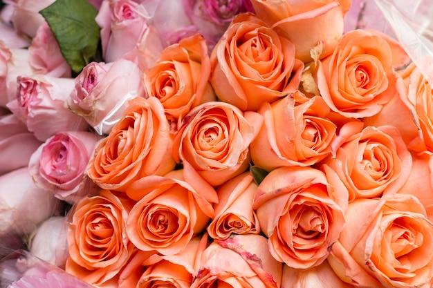 クローズアップオレンジとピンクのバラ