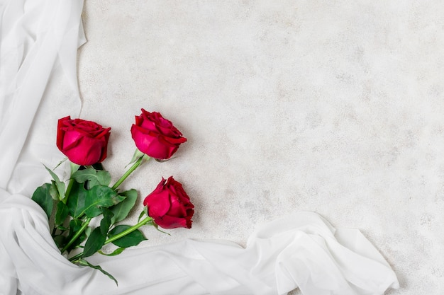 トップビューの美しい赤いバラ