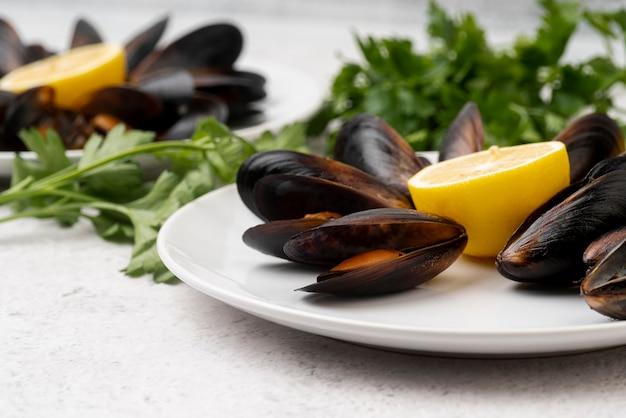 Свежие средиземноморские мидии на тарелке