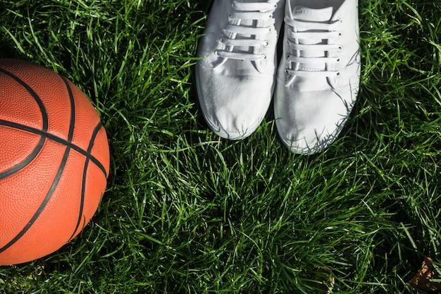 バスケットボールの横にあるトップビュートレーナー