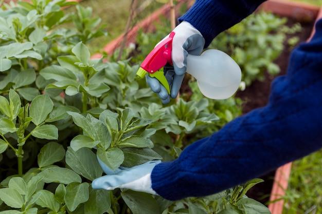 Человек опрыскивает растения в саду