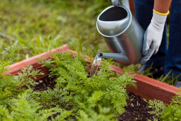 Крупным планом человек поливает растения с помощью спринклера