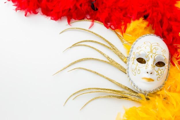 Элегантная карнавальная маска и перья
