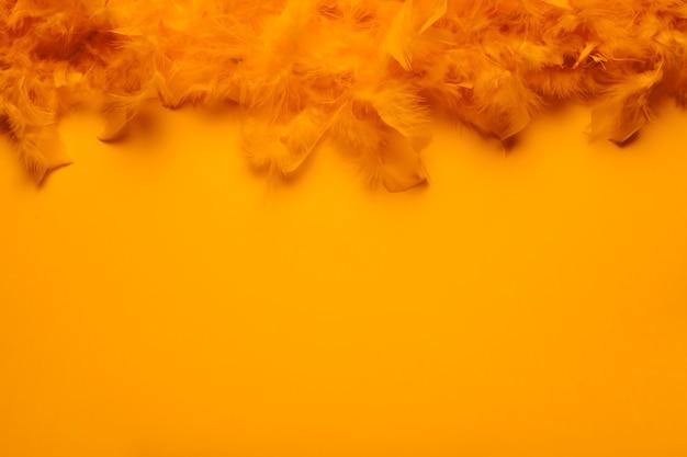 コピースペースを持つオレンジ色の羽毛製の襟巻
