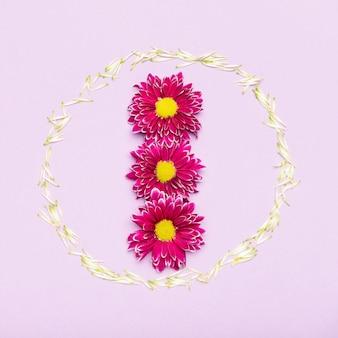 花びらとカラフルな花のフレームコンセプト