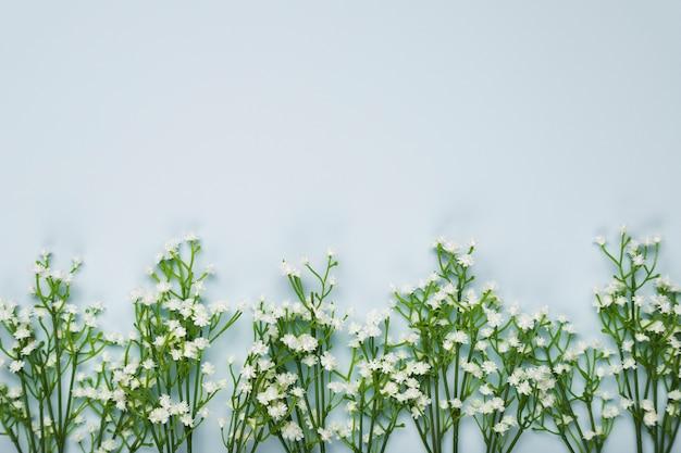 コピースペースを持つフラットレイアウトの花の花