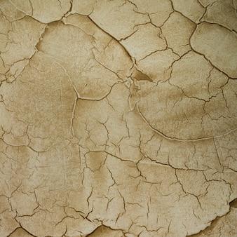 亀裂の多いセメント壁