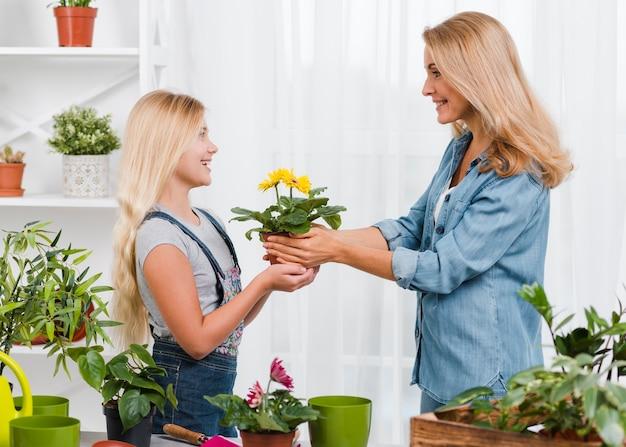 母は娘の植木鉢を与える