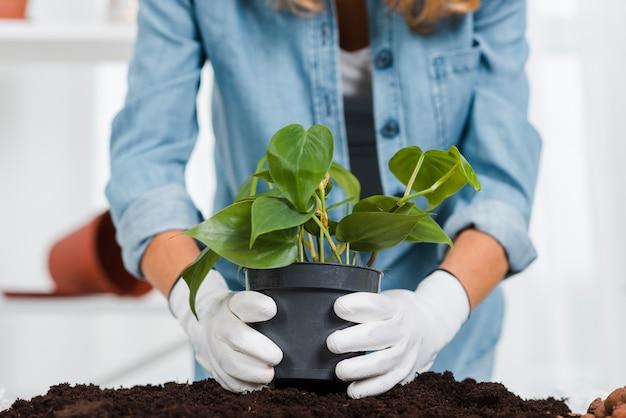 植木鉢を保持している手袋とクローズアップの女性